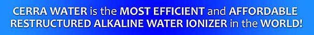 most efficient water ionizer